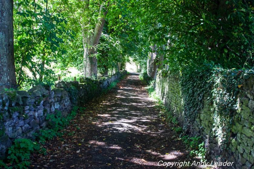 Robinson Lane (1 of 1)