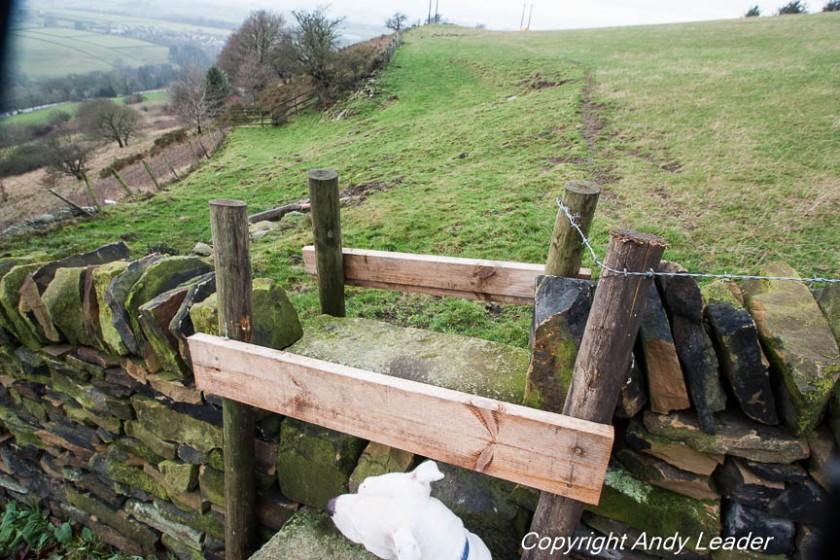 Fence HOL-134-10 b stone stile (1 of 1)