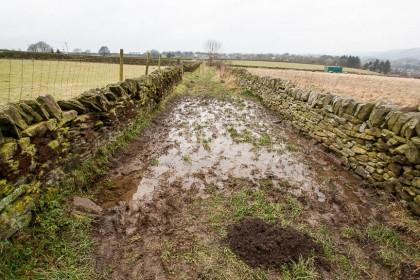 HOL 144-20 drainage (1 of 1)