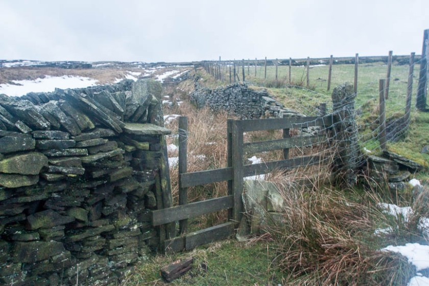 Holmfirth 65 fence obstruction (1 of 1)