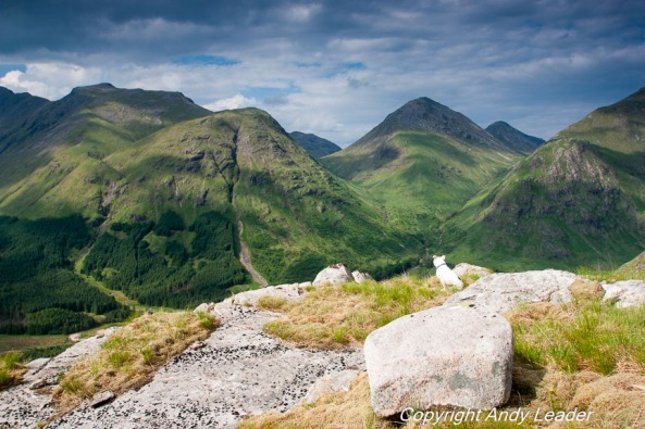 Glen Etive (1 of 1)