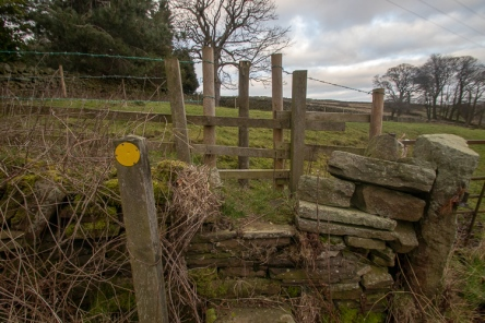 HOL 73 Fence obs